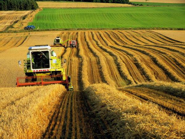 en iyi tarımsal iş fikirleri