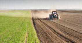 getirisi-yüksek-tarımsal-bitkiler