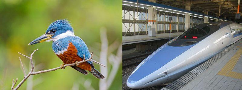 inovasyon örnekleri