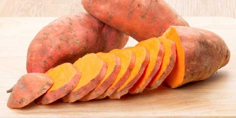 tatlı-patates-yetiştiriciliği